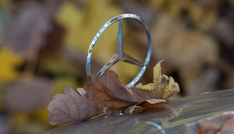 Daimler Abgasskandal: OLG Köln Urteil vom 06.09.2019 – Zurückverweisung und Einhoplung eines Sachverständigengutachten